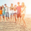 Multiethnic Group of Friends at Beach — Stock Photo #29723483