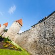 Stock Photo: Old Wall in Tallinn
