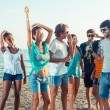 Group of Friends Having a Party on the Beach — Stock Photo #30523835