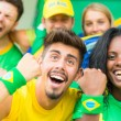 Stock Photo: BrasiliSupporters at Stadium