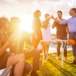 Group of Friends Toasting at Party — Stock Photo #31228541