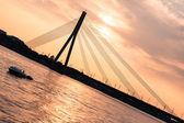 Modern Bridge in Riga — Stock Photo