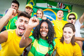 Brasilian Supporters at Stadium — Stockfoto