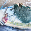 Young Woman Washing Car, interior view — Stok fotoğraf