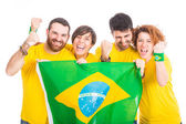 Group of Brazilian Supporters — Stockfoto