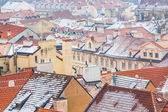 Panoramic View of Roof in Prague — Stok fotoğraf