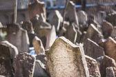 Jewish Cemetery in Prague — Stock Photo