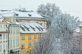 Panoramic View of Roof in Prague — Stock Photo