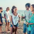 Stock Photo: Group of Friends Having a Party on the Beach
