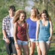 Group of Teenage Friends Walking at Park — Stock Photo #39729069