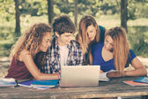Group of Teenage Students at Park with Computer and Books — Stock Photo