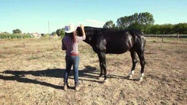 Riding Horse — Stock Video