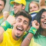 Brasilian Supporters at Stadium — Stock Photo #46538979