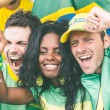 Brazilian Supporters at Stadium — Stock Photo