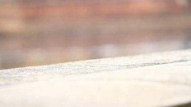 Girl Walking Along Arno River — Stock Video