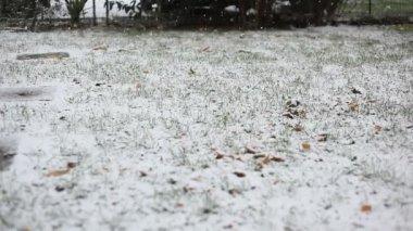 Snowing — Stock Video