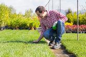Young Gardener Working at Nursery — ストック写真