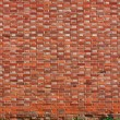 Brick wall background with grass — Stock Photo #17381361