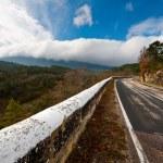 Mountain Road — Stock Photo #11816333