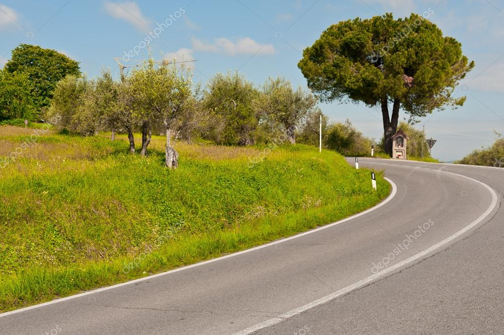 Olive Grove near the Winding Paved Road in the Italian Alps — Stock Photo #13157281
