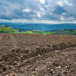 Plowed Fields — Stock Photo #13172301