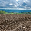 Plowed Fields — Stock Photo