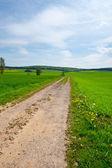 Dirt Road — Foto Stock