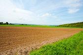 Germany Landscape — Photo
