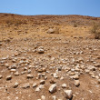 Stone Desert — Stock Photo #17349821