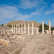 rovine di bet shean — Foto Stock