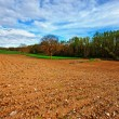 Plowed Fields — Stock Photo #18369495
