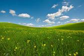łąki z toskanii — Zdjęcie stockowe