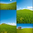 Sloping Meadows - Stock Photo