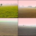 Mist of Sunrise — Stock Photo