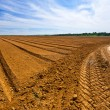 Furrow — Stock Photo
