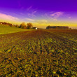 Swiss  Plowed Fields - Stock Photo