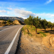 Road on Rhodes - Stock Photo