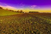 Swiss Plowed Fields — Stock Photo