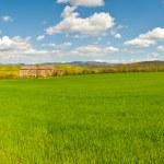 Panorama över Toscana — Stockfoto #22789408