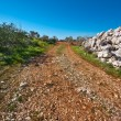 Slopes of Galilee — Stock Photo