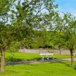 Landscaped Park — Stock Photo