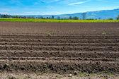 Plowed Fields — Stock Photo