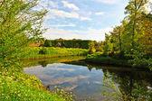 канал в нидерландах — Стоковое фото