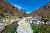 No fluxo de pedra — Fotografia Stock