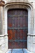 Belgian Door — Stock Photo