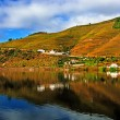 Stock Photo: River Douro