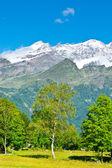 Snow-capped Alps — Stock Photo