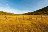 забор — Стоковое фото