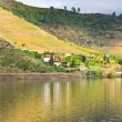 River Douro — Stock Photo