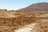 Stony Desert — Stock Photo